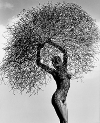 Herb Ritts L.A.STYLE 8