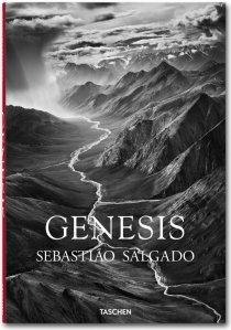 Genesis - Salgado