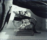 witkin5